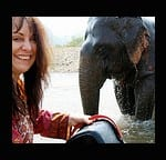 TRAVEL BEAD TRUNK SHOW …help me foster an elephant and get awesome beads